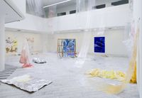 Installation view. amongst all sorts of colours, venus hair and a day of thirst, a sleeping jellyfish, it is the memory place, 2016. Tranen, Copenhagen