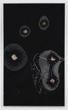 Rain over Water, 2014. Aluminum, glass, plastics, pig brains, zink, RFID-tags. 163 x 98 x 4 cm