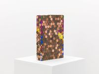 Pentimento Kelloggs (Raisin Bran), 2016. Kelloggs Raisin Bran, US pennies, silicone. 30 x 20 x 5,5 cm