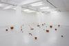 Rolf Nowotny. Installation view. Full Frontal Nudity, 2011. Overgaden, Copenhagen