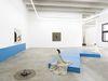 Installation view. Shelly Nadashi. The Exhibition Leaves, 2015. Christian Andersen, Copenhagen