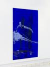 amongst all sorts of colours, venus hair and a day of thirst, a sleeping jellyfish, it is the memory place, 2015-2016. Plexiglass, acrylic, acrylic paste. 180 x 120 cm