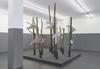 Installation view. Nesting Box, 2016. Dortmunder Kunstverein, Dortmund