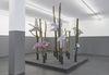 Installation view. Shelly Nadashi. Nesting Box, 2016. Dortmunder Kunstverein, Dortmund