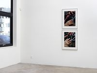 Installation view. The Long Zoom, 2018