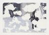 Tom Humphreys. Untitled, 2016. Inkjet, latex on linen. 197 x 291 cm