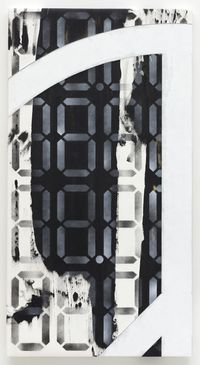 88.8888, 88.8888 ND2, 2018. Acrylic on cotton and polyester-polyamide. 115,3 x 61 x 3 cm