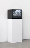 Jenna Bliss. New York, New York, 2018. HD video with sound. 1:35 minutes. Subsets, 2019. Christian Andersen, Copenhagen