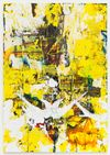 Morten Skrøder Lund, Untitled, 2015. Ink, lacquer, plastic, acrylic, inkjet photo print, toner, oil on canvas. 180 × 125 cm