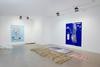 Installation view. Tripping/ or/ Trickling blooming/ or/ Stumbling flowing/ or/ I carried away (lightly orange coloured)/ I seized (colour change)/ I ran (beside the real image)/ I rested (blue ravine blue forrest through blue I see), 2015. Christian Andersen, Copenhagen