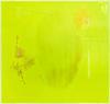Astrid Svangren, Att lösgöra sig / försök ha distans / önskningar och argument / vad är skillnaden? 2011. Acrylic and wax on Plexiglass. 130 x 138 cm. Att lösgöra sig / försök ha distans / önskningar och argument / vad är skillnaden?, 2011. Christian Andersen, Copenhagen