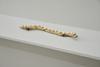 Lina Viste Grønli. Fig. III, 2019. Twig, brass nails, chewing gum. 29,5 cm x 4 cm x 5 cm. Nye skulpturer, Entrée, Bergen