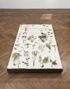 Patricia L. Boyd. Unearthed, 2019. Weeds, canvas, plinth. 165,4 x 110,5 x 14 cm