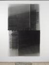 Patricia L. Boyd. Englische People, 2017. Silver gelatin photogram. 257 x 157,5 cm